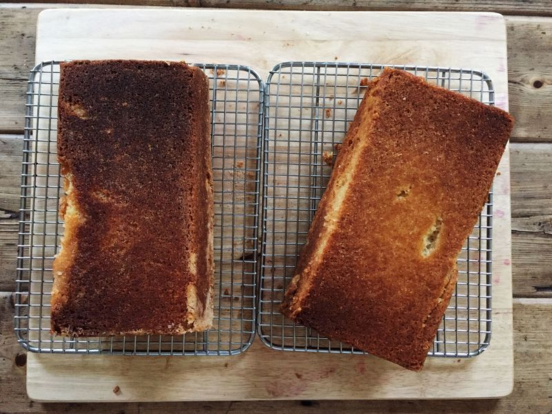 Special Grease (left) versus butter (right). Neither is perfect. C'est la vie.