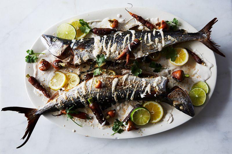 Holy mackerel, what a beaut!