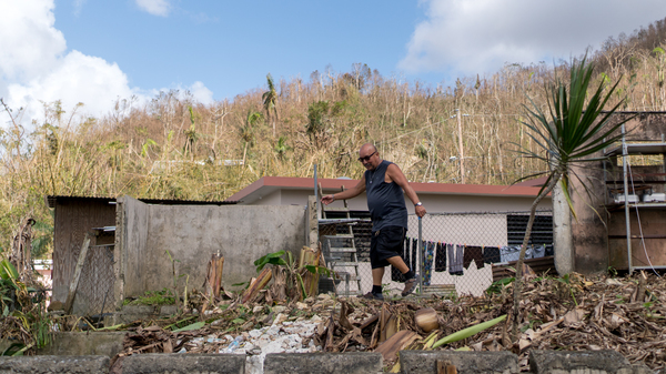 Rafael Medina Rios, 66, walks through his barren banana plantation behind his house in Cayey, Puerto Rico. The plants were damaged by Hurricane Maria.