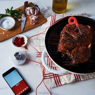 Range Bluetooth iPhone / iPad Cooking Thermometer
